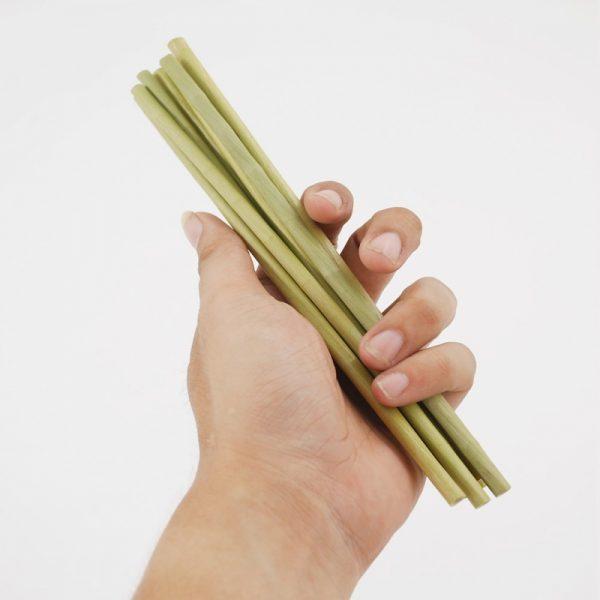 ống hút cỏ bàng giá sỉ - Grass straws vietnam