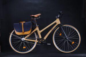 Xe đạp Bằng Tre 2