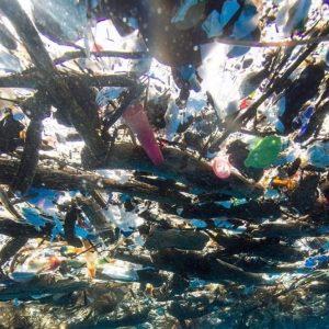 Những tác hại khủng khiếp từ ống hút nhựa