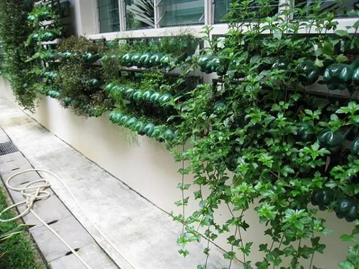 Vertical Gardening With Recyclables 1