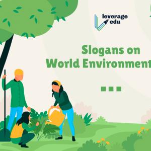 +80 Slogan bảo vệ môi trường bằng tiếng Việt